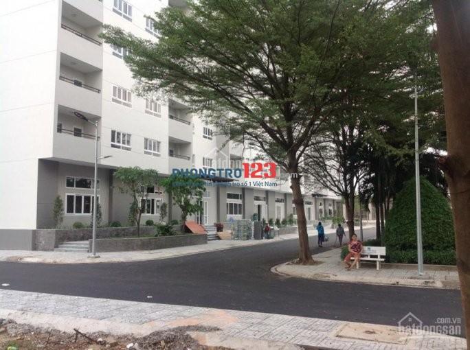 Cần cho thuê căn hộ giá rẻ khu vực Q.12 trên đường Lê Văn Khương