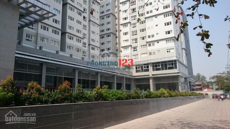 Chính chủ cho thuê CCTL4 95m2 02 PN/02 WC: 12.5 tr/tháng, full nội thất