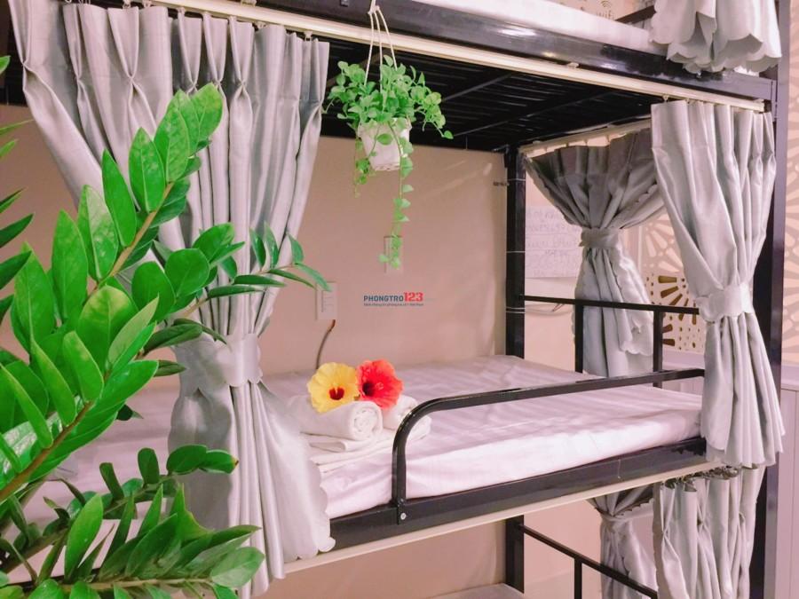 Giường Dorm cao cấp tại Everich Infinity 5 sao
