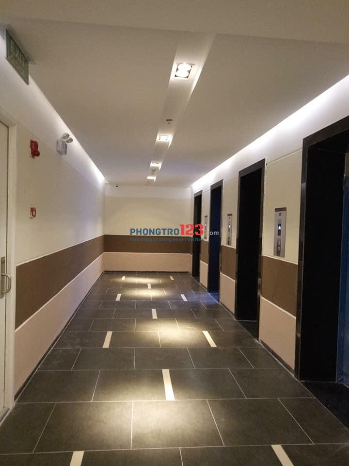 Cho thuê căn hộ 70m2 2 phòng ngủ, 2 WC tại chung cư Eco Lake View Đại Từ. LH: 0981533888