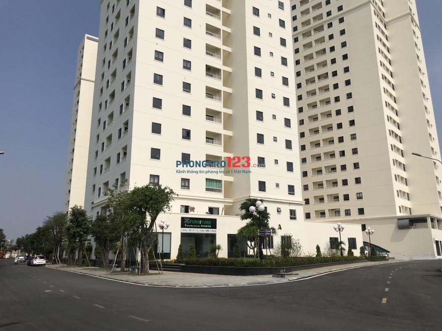 Cho thuê căn hộ chung cư MT Nguyễn Cửu Phú, giá từ 4-6tr/tháng, đầy đủ tiện ích
