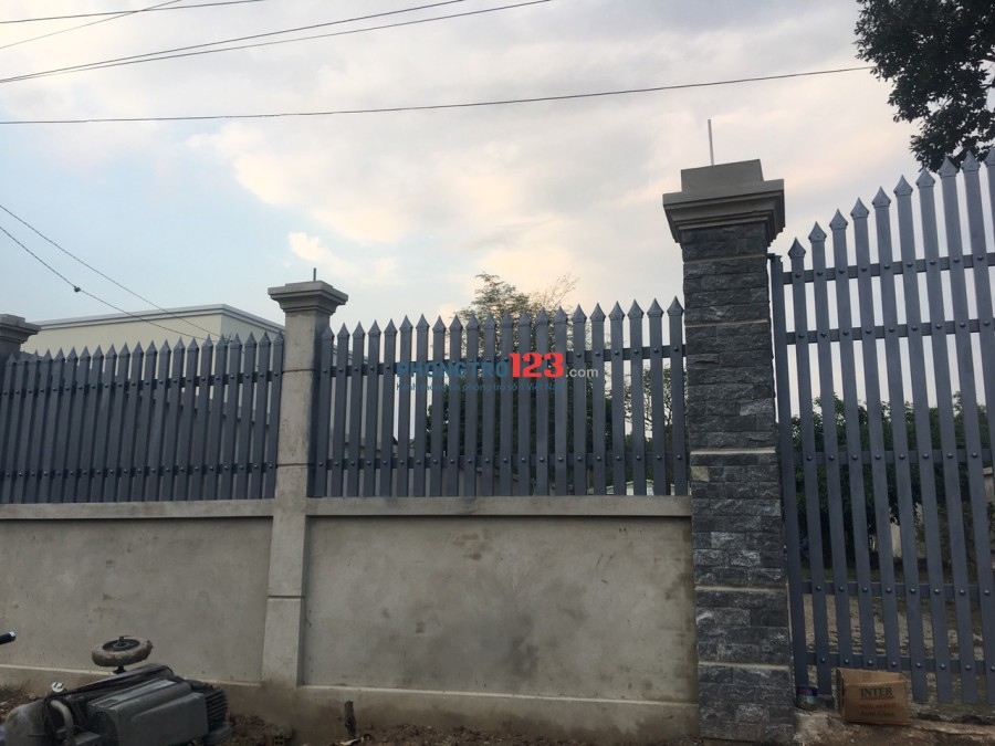 Cho thuê đất 2 mặt tiền 14x50 đường Mai Thị Chững, Xã Tân An Hội, Củ Chi, giá 3tr/tháng