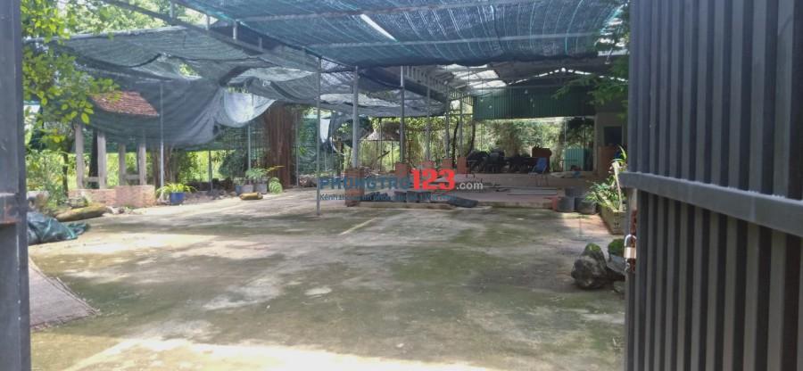 Cho thuê mặt bằng làm quán ăn, cafe sân vườn, kho, xưởng tại Lê Thị Hà, Hóc Môn. LH: C Hà