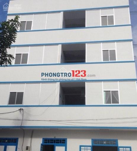Cho thuê phòng MT dưới đất căn nhà trong hẻm 116 đường Bùi Tư Toàn, P.An Lạc, Bình Tân