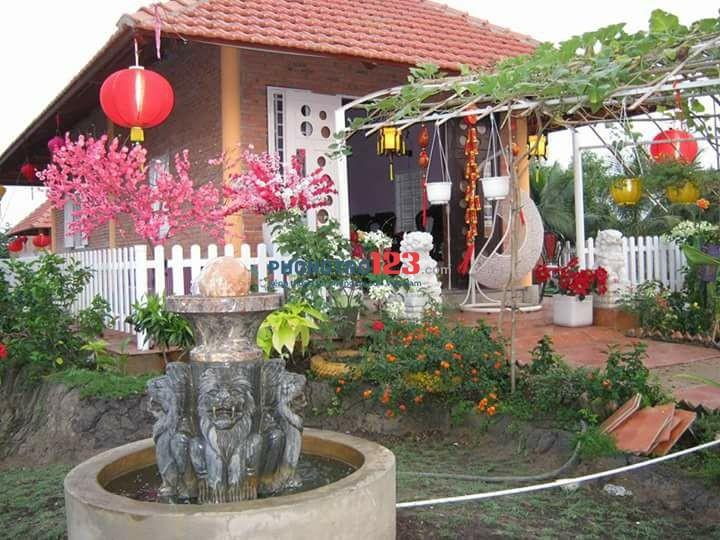 Cho thuê Hoặc Bán Nhà Vườn DT hơn 1000m2 tại xã Bình Mỹ, Huyện Củ Chi. LH Ms Vân