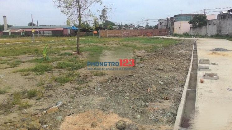 Chính chủ cho thuê 3000m2 đất làm kho xưởng, Mặt tiền 835 gần Cầu Long Khê, Tỉnh Long An