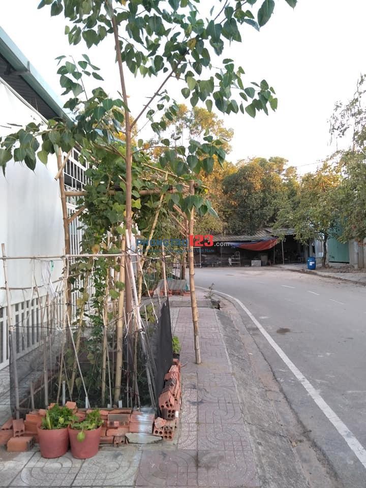 Chính chủ cho thuê 2 căn nhà mặt tiền Đường ở P.Hiệp Phú Và P.Tân Phú, Q.9 Mr Đoàn