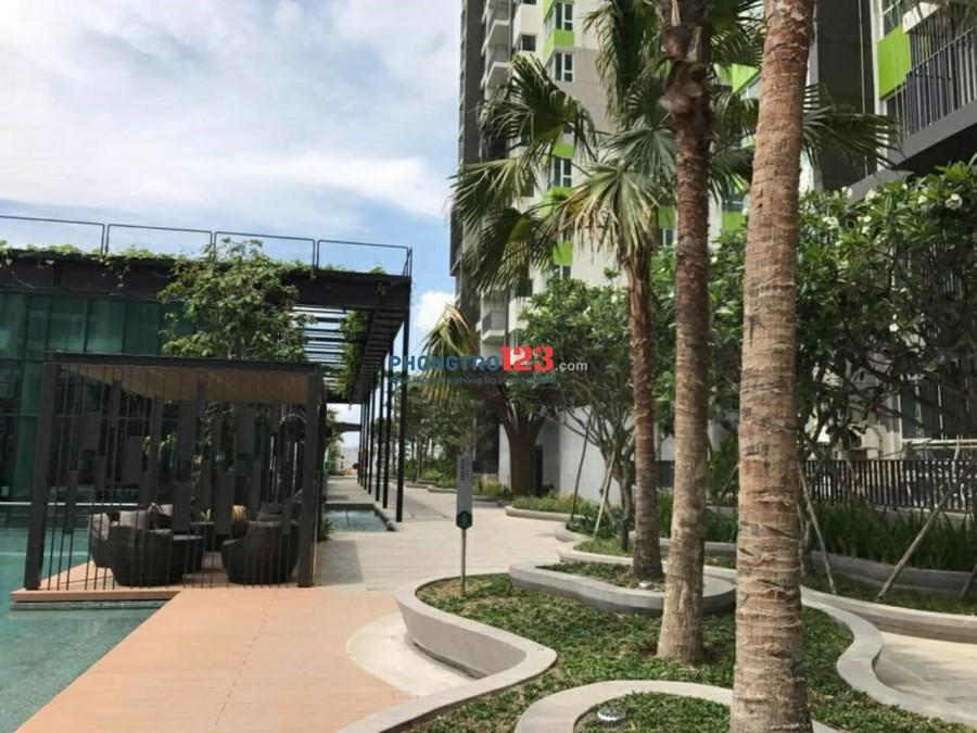 Tiện ích 5 sao giá siêu ưu đãi cho 2 bạn nữ cuối ở ghép cùng căn hộ xanh cao cấp chuẩn Singapore