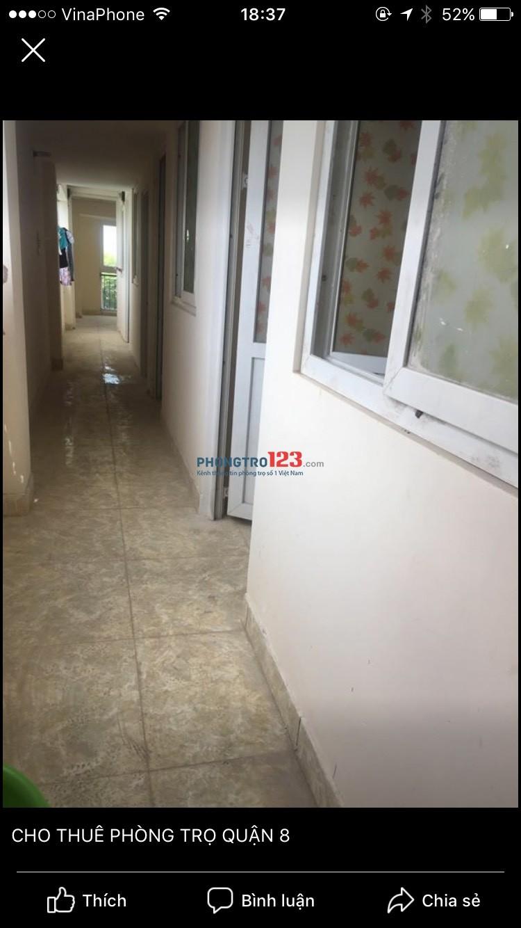Cho thuê phòng gần ngã 4 An Dương Vương và Võ Văn Kiệt Số 15A Đường 48, Phường 16, Q.8. Giá 1.3 triệu