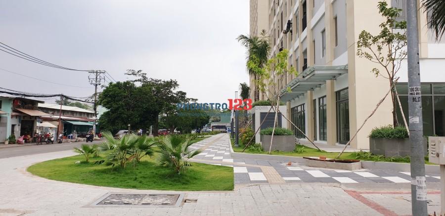 Chính chủ cho thuê nhà nguyên căn dài hạn đối diện khu biệt thự Jamona Golden Silk Q.7