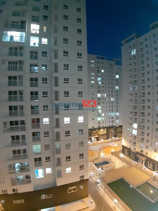 Cho thuê CHCC Tara Residence 1A Tạ Quang Bửu, Quận 8. DT 78m2, 2PN, 2WC có nội thất