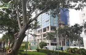 Cho thuê căn hộ Calla Garden 77m2 3pn Nguyễn Văn Linh, Phong Phú, Bình Chánh. Giá 8.5tr/th