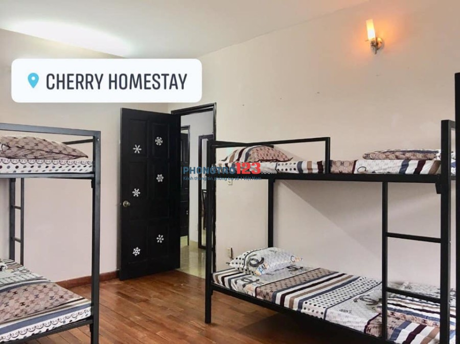 Phòng trọ Cherry Homestay Q3 tuyển 2 nữ và 1 nam