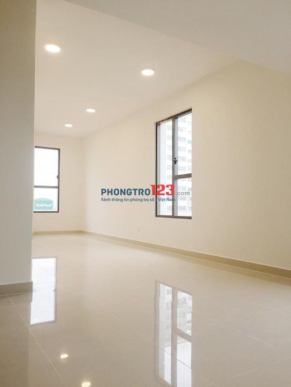 Cho thuê căn hộ mini mới 100% được sử dụng hồ bơi miễn phí - Được nấu ăn, Giá rẻ mùa Conora - LH 0908 55 1404