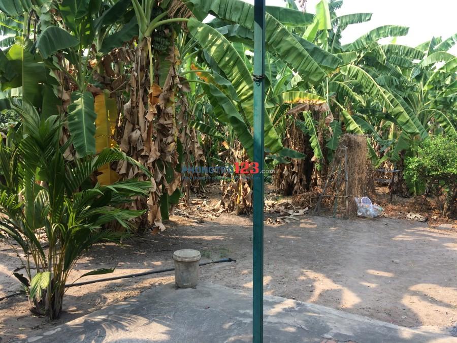 Cho thuê đất làm chỗ bán vật liệu xây dựng, bãi xe đường Võ Thị Hồi gần gà hấp hèm 34
