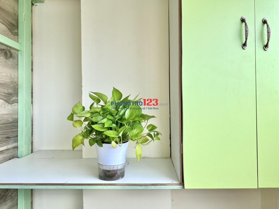 Phòng ở Mini riêng biệt sử dụng Toilet chung