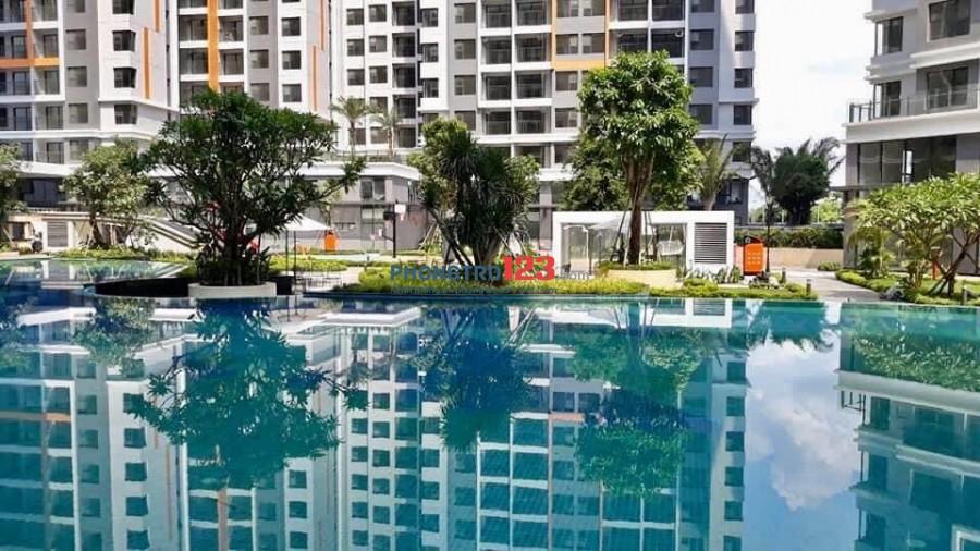 Cho thuê căn hộ safira 50m2 ( từ tháng 8/2020). Giá thuê 5tr/tháng