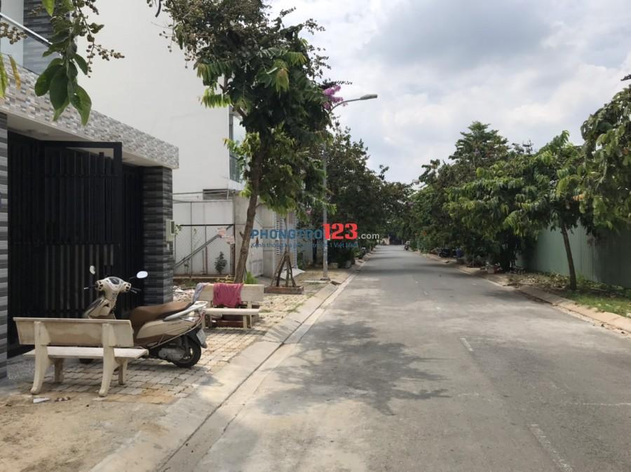 Cho thuê nhà mới xây 100% 1 trệt 4 lầu 5x21 mặt tiền 42 Đường D3 P Tăng Nhơn Phú A Q9
