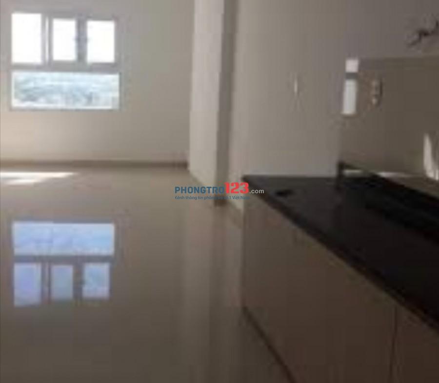 Cho thuê căn hộ 65m2, 2pn, 2 wc, Vườn Lài, An Phú Đông, chính chủ