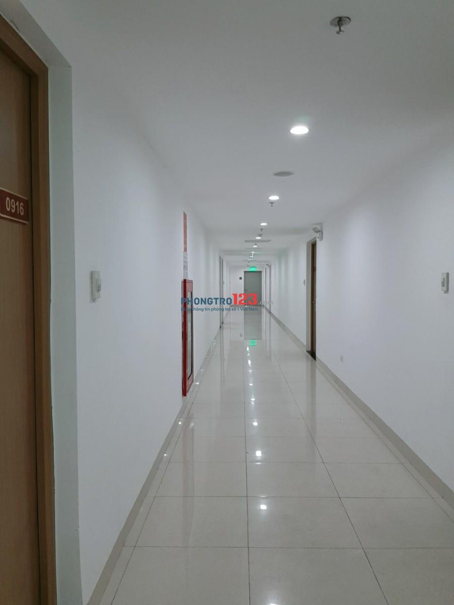 Cho thuê căn hộ cao cấp 24 Nguyễn Cơ Thạch