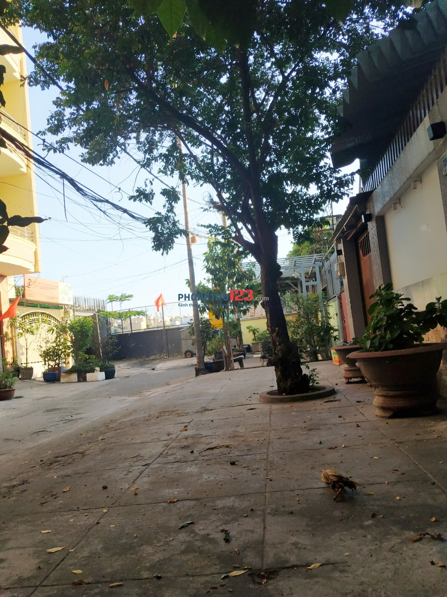 Phòng Nội Thất CMT8 Cv Lê Thị Riêng, Giờ tự do