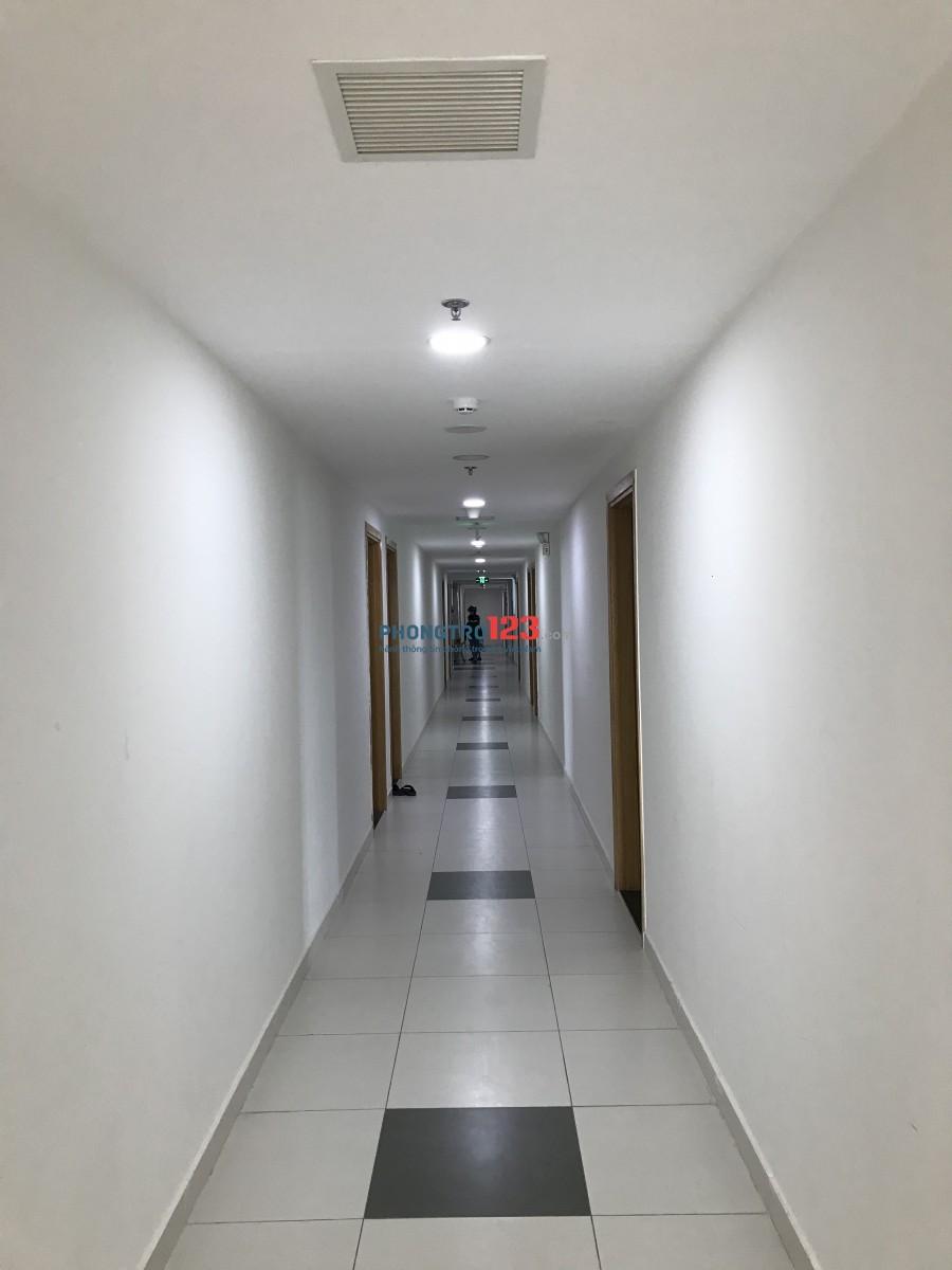 Cho thuê căn hộ Marina 3 phòng ngủ giá rẻ