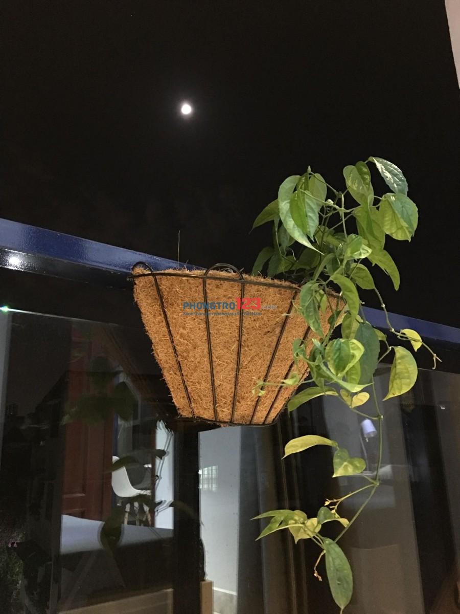 Khai trương CHDV 1PN sang trọng ngay trung tâm Phú Nhuận