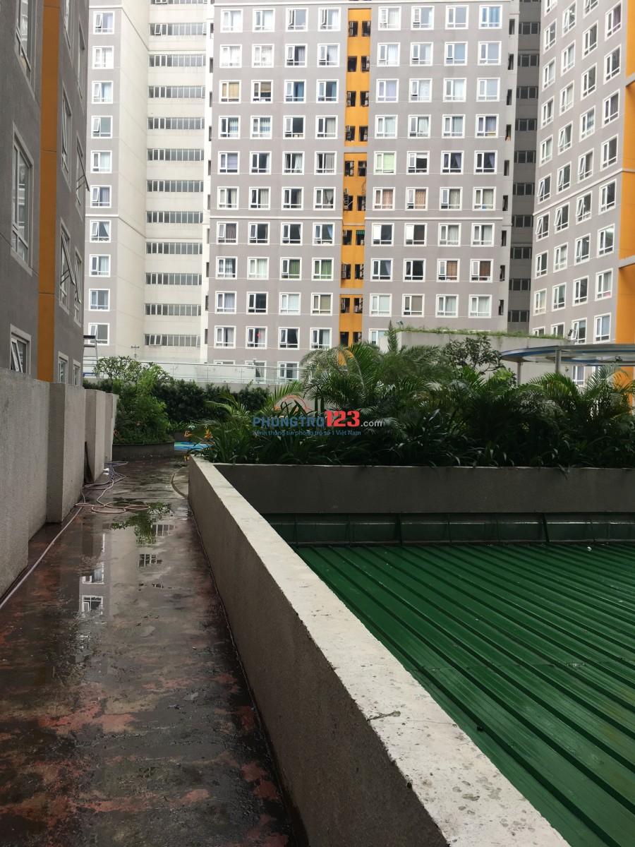 Cho thuê phòng chung cư quận 2 gần trung tâm thành phố