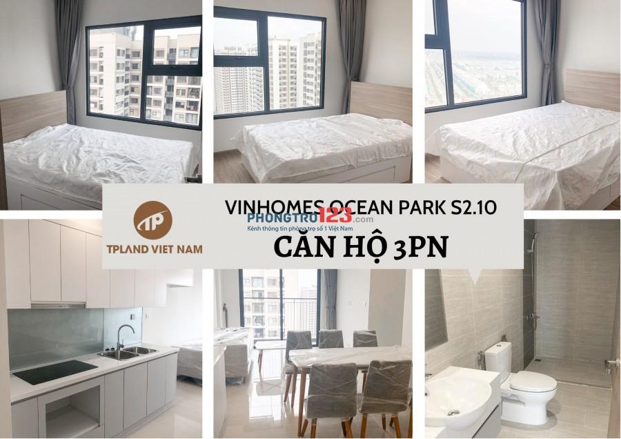 Chủ đầu tư Vinhomes cho thuê căn hộ Vinhomes Ocean Park