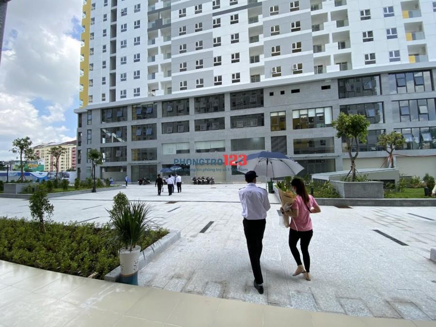 Cho thuê căn hộ chung cư Diamond Riverside